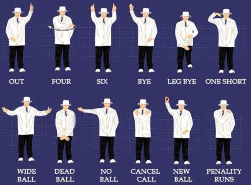 comment jouer au cricket guide pour débutants