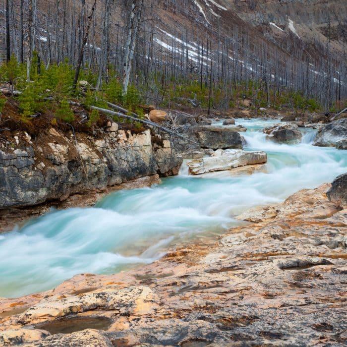Le sentier du ruisseau Sinclair et du Col-Kindersley
