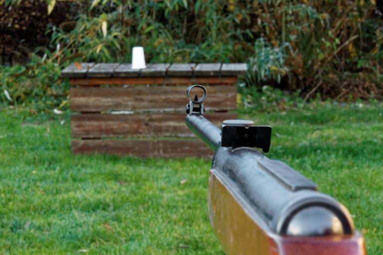 Comment bien choisir sa carabine de tir?