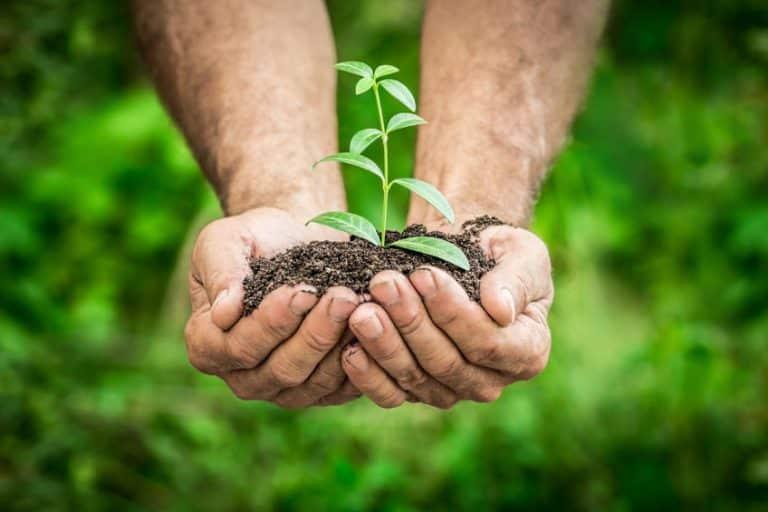 15 gestes écologiques à adopter quotidiennement